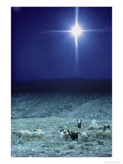 Star+of+Bethlehem